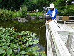 大阪 ザリガニ 釣り